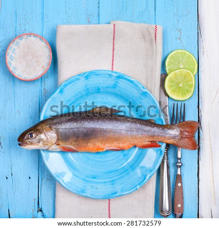 fresh brook trout fish with Lemon and spices - stock photo