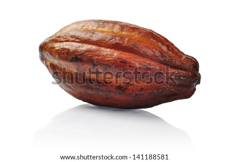 Fresh cacao fruit isolated on a white background. Clipping path included - stock photo