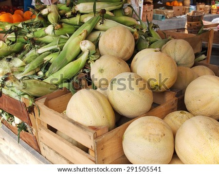 Fresh cantaloupes and corn on the cob piled high in crates at countryside farmer's market. - stock photo