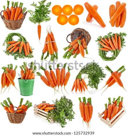 fresh carrot fruits collage collection set, isolated on white background - stock photo