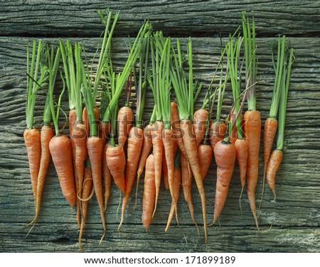 fresh carrot on wood texture - stock photo
