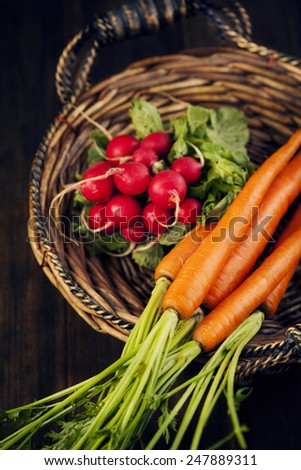 Fresh carrots and radish in the basket. Selective focus. Shallow depth of field - stock photo