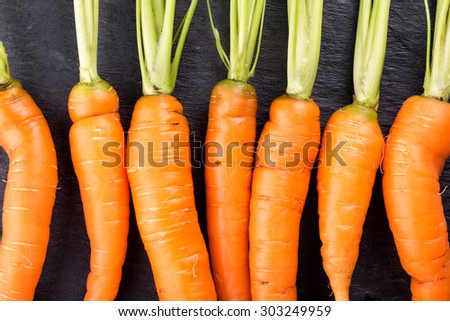 Fresh carrots in a row on black slate background. Top view. - stock photo