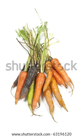 Fresh carrots in different colors - stock photo