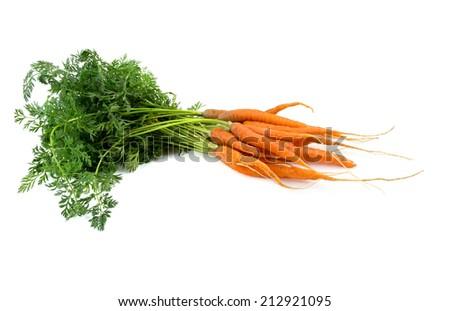 fresh carrots isolated on white - stock photo