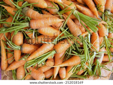 Fresh Carrots on a market stall. - stock photo