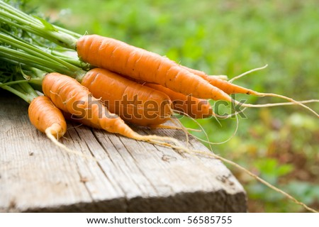 Fresh carrots on wooden board - stock photo