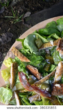 Fresh Ceaser salad - stock photo