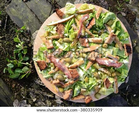 Fresh Ceaser salad in garden - stock photo