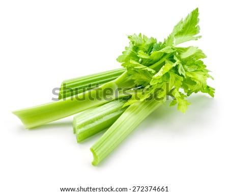 Fresh celery isolated on white background - stock photo