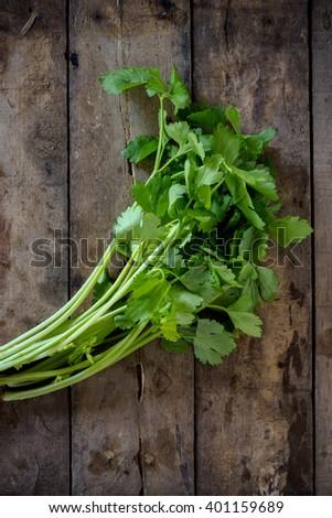 Fresh celery on wood background.dark tone - stock photo