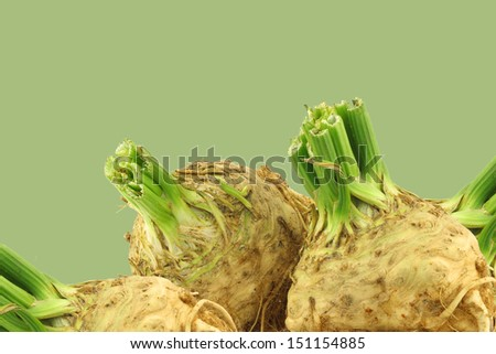 fresh celery roots with some foliage on a green background - stock photo