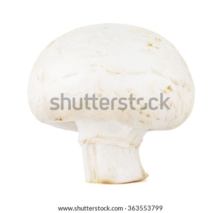 Fresh Champignon Mushroom - stock photo