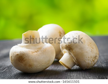 Fresh champignons on black wooden board. Green natural background.