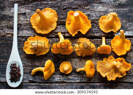 Fresh chanterelle on a wooden background and a spoon with condiments - stock photo