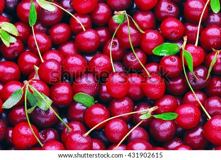 Fresh Cherries - stock photo