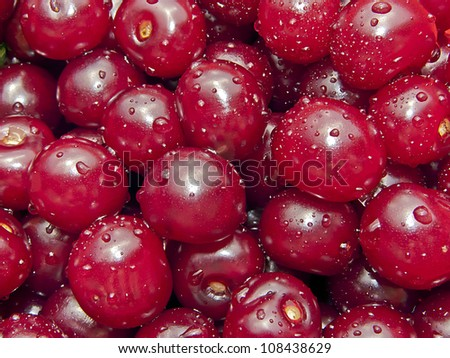fresh cherry pieces in water, close up - stock photo