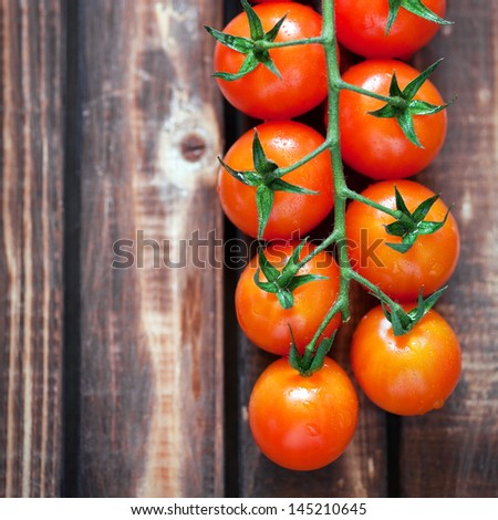 Fresh cherry tomatoes on a branch, selective focus - stock photo