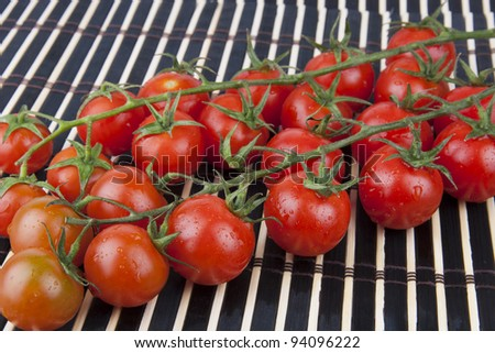 Fresh Cherry Tomatoes on the branch