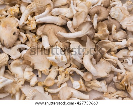 Fresh chestnut mushrooms full frame  - stock photo