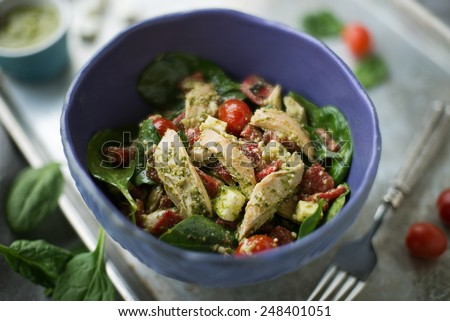 Fresh chicken and pesto salad with spinach - stock photo