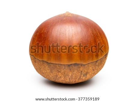 Fresh Chinese Chestnut Isolated on White Background with Clipping Path. - stock photo