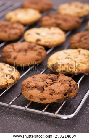 Fresh chocolate chip cookies on the cooling rack - stock photo