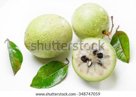 fresh Chrysophyllum cainito  fruits isolated on white background