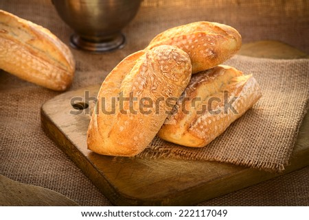 Fresh ciabatta buns on wooden board photographed with natural light (Selective Focus, Focus on the left bun on the board) - stock photo