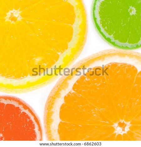 Fresh citrus - stock photo