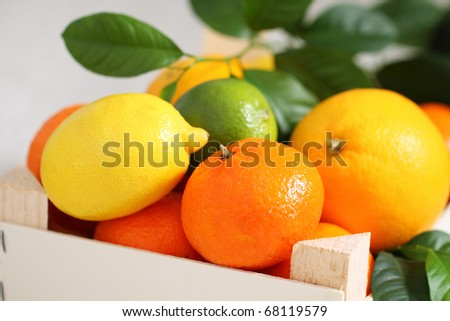 Fresh citrus fruits in the wooden box - stock photo