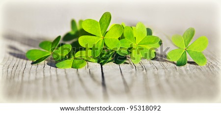 Fresh clover leaves over wooden background, green spring floral border, lucky shamrock, St.Patrick's day holiday symbol - stock photo