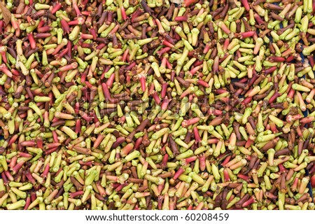 Fresh cloves mixed colors drying and on display - stock photo