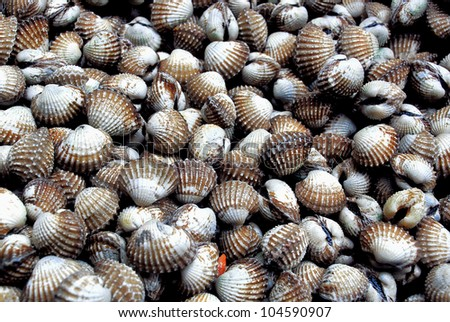 fresh cockles for sale at a market
