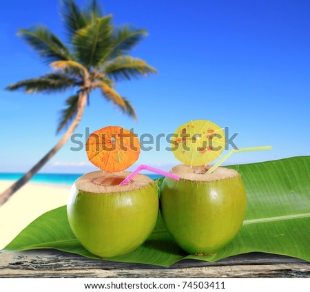 fresh coconuts straw cocktails on tropical palm tree caribbean beach [Photo Illustration] - stock photo