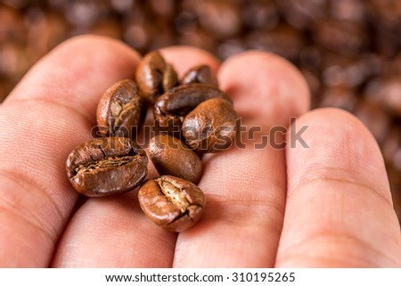 Fresh coffee beans on hand, selective focus. - stock photo