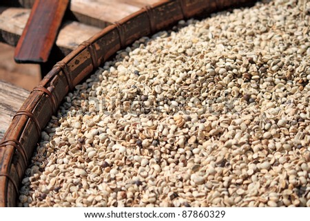Fresh coffee beans on wooden - stock photo
