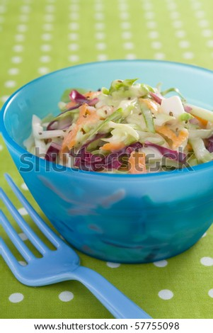 Fresh cole slaw made with green cabbage, red cabbage, carrots, and mayonnaise. - stock photo