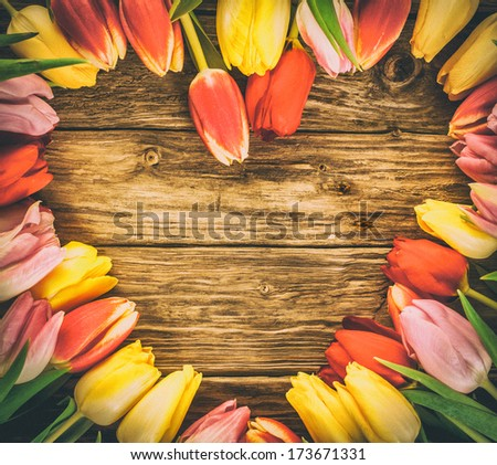 Fresh colourful tulips in a heart-shaped frame on a grunge wood background with weathered woodgrain texture and copyspace - stock photo