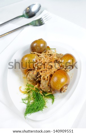 Fresh cooked shell - stock photo