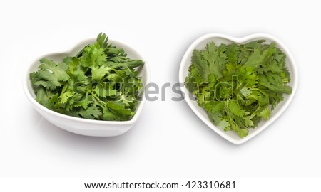 Fresh coriander leaves  in a heart shaped bowl, isolated on white - stock photo