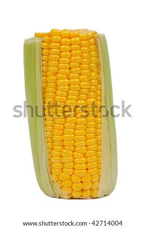 Fresh corn cob. Isolated on white background. - stock photo