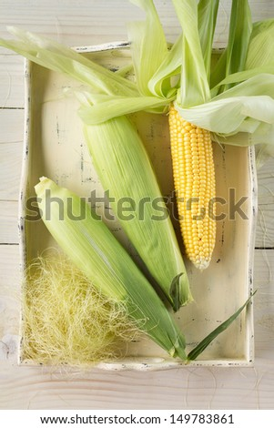 Fresh corn cobs on wooden tray - stock photo