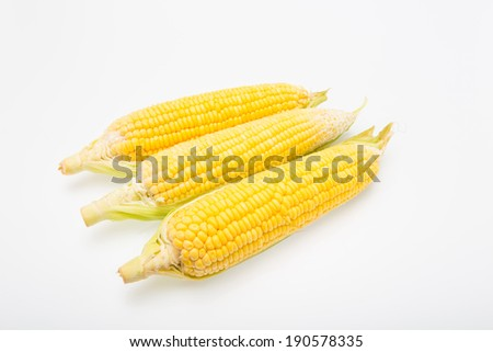 Fresh corn fruits with green leaves isolated on white background.