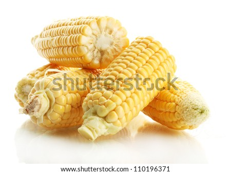 fresh corn, isolated on white