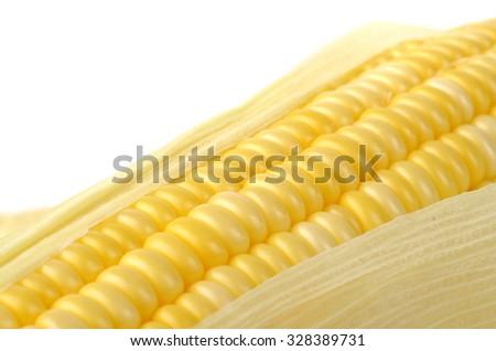 Fresh corn isolated on white background - stock photo