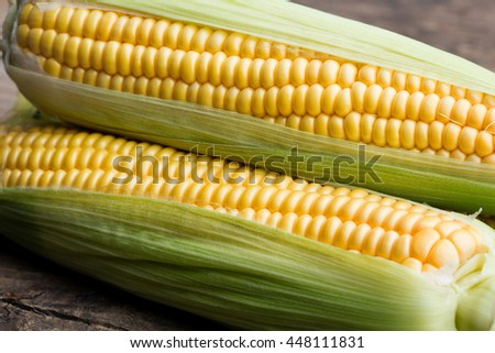 Fresh corn on cobs on rustic wooden table - stock photo