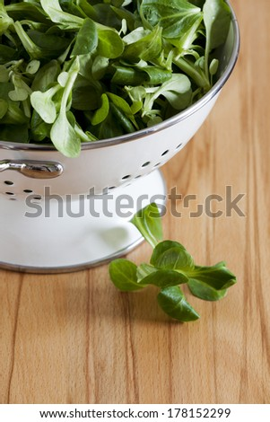 Fresh corn salad in a white enamel colander with copy space in the lower area the image