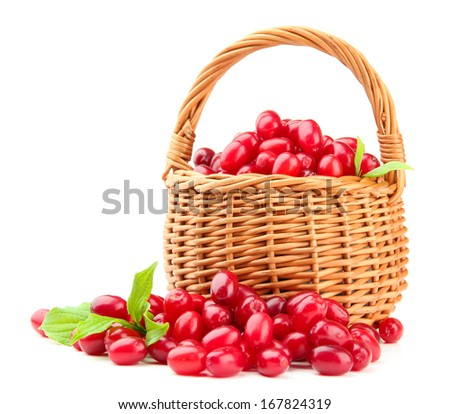 Fresh cornel berries in wicker basket, isolated on white - stock photo