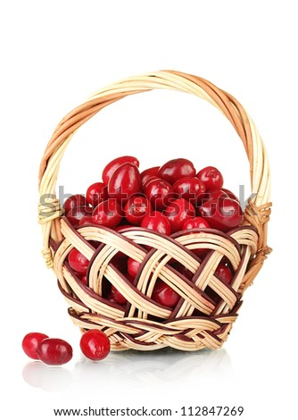 fresh cornel berries in wickerbasket isolated on white
